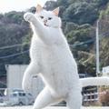 「ジョジョ立ちすげえwww」屈強なポーズ決める猫の画像が話題に
