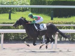 【小倉8R】斎藤新が好騎乗!ロングスパートを決めて7馬身差圧勝!