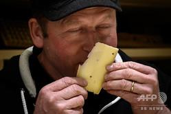 6か月間ヒップホップを「聞かせた」チーズの風味を嗅ぐ職人のベアト・ワンフラー氏(2019年3月14日撮影)。(c)Fabrice COFFRINI / AFP