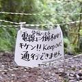 台風被害の高尾山 迷惑登山客も
