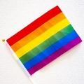 紅白でレインボーフラッグを背に歌い上げたMISIA LGBTQへの感謝か