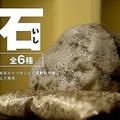 【15秒CM】石