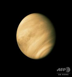 金星を捉えた紫外線写真(1974年2月10日撮影)。(c)AMichael Benson / NASA/JPL / AFP