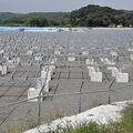 買い取り制度の弊害 2040年ごろには太陽光パネルの廃棄問題が深刻化?