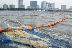 東京五輪でトライアスロンなどが行なわれるお台場海浜公園。競技実施予定エリアのすぐ近くに、謎の茶色の泡が堆積していた