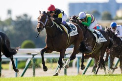 【京都3R】武豊 オーマイダーリンが直線一気の末脚で初勝利