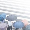 台風の日でも通勤ラッシュ「決まり」と「慣習」取り違えか