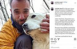 森で迷子になった犬と、ドローンで捜し出した男性(画像は『Brian James 2020年11月23日付Instagram「Two days ago, I saw a Reddit post about a missing golden retriever.」』のスクリーンショット)
