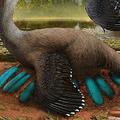 世界初、中国で「ふ化前の卵を抱く恐竜の化石」見つかる