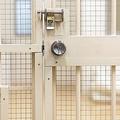 拘置所の廊下に響く刑務官の靴音…死刑囚に訪れる「最後の日」
