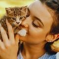 ネコに好かれるコツは「ゆっくりまばたき」心理学者のチームが実証