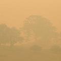 オーストラリア南部、バラゲートを包む煙(AP)