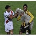 選手に捕まり場外へと運ばれた犬(画像は『Elite Readers 2021年1月5日付「Bolivian Soccer Player Adopts Stray Dog Who Interrupts Match」』のスクリーンショット)