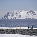 南極(2019年11月6日撮影、資料写真)。(c)Johan ORDONEZ / AFP