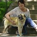 97日をかけて旅をした3日後に撮影された写真(画像は『StarTribune.com 2020年5月18日付「St. Paul rescue dog leaves new home, goes on her own 'Incredible Journey'」(ANTHONY SOUFFLE - STAR TRIBUNE)』のスクリーンショット)