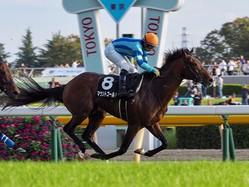 【オクトーバーS】マウントゴールドが逃げ切り!内田博幸が巧みにレースをコントロール