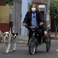 ペルーの首都リマで、三輪車でペットの犬たちを散歩させるアルゼンチン人のマイケル・グラフさん。AFPTV動画より抜粋(2020年6月11日撮影)。(c)Christian SIERRA / AFPTV / AFP