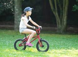 この自転車は半年かけて貯金したお金で買ったのですが…(hakase420/stock.adobe.com)