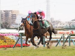 【京成杯】キズナ産駒 クリスタルブラックがデビュー2連勝で重賞初V!