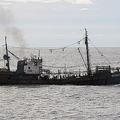 北朝鮮が日本の漁場で密漁を繰り返す 政府の甘い対応が原因か