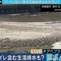 東京湾の「汚水」問題 対応策は