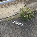 「ZUKI」が落ちていた(画像はてんねぇ(@mQtf3WiovqJNYJH)さんが2020年4月3日投稿)