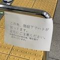 階段の手すりに「この先、ハトが弱っています」との張り紙が=タダノさん提供