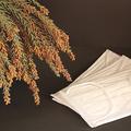 5日は花粉の大量飛散を予想 すぐに実践できる対策法を紹介