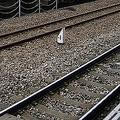 鉄道での感染が心配されているが…(写真はイメージ)