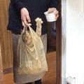 画期的?コンビニの袋で猫を運搬するシュールな光景が話題に