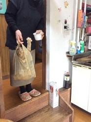 【飼い主さんに聞いてみた】コンビニの袋で運ばれちゃっても気にしてない猫さんがシュールすぎる