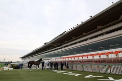 4月11日(土)以降の中央競馬開催について