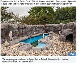 動物園のペンギンをよく見ると…(画像は『The Sun 2018年10月2日付「ZOO MUST BE KIDDING There's something wrong with this penguin enclosure - can you see what it is?」(Credit: SWNS)』のスクリーンショット)