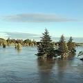 川越線から見えた光景。 鈴木さん(@mentaiko1122)のツイートより