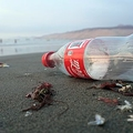 プラスチックで汚染している企業 断トツ1位はコカ・コーラ
