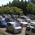 ドライブスルー方式で販売されたプレミアム飲食券 周辺で4キロの渋滞