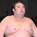 昨年11月場所優勝の貴景勝(時事通信フォト)