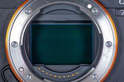 キヤノンのミドルクラス参戦でフルサイズミラーレス市場に波乱! どうなる2019年のカメラ市場
