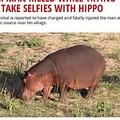 穏やかなカバとセルフィーを撮ろうとして…(画像は『EWN: Eyewitness News 2018年3月15日付「Zim man killed while trying to take selfies with hippo」』のスクリーンショット)