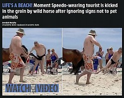 馬に触れとんでもない目に…(画像は『The Sun 2019年7月21日付「LIFE'S A BEACH! Moment Speedo-wearing tourist is kicked in the groin by wild horse after ignoring signs not to pet animals」』のスクリーンショット)