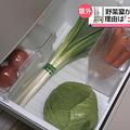 冷蔵庫の野菜室にはトイレの床並みの細菌「ビニールに入れて保管を」