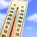 夏の強い日差しの照りつけ アスファルトは簡単に50℃以上にも