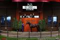 <セレクトセール2020>5億1000万で落札されたシーヴの2019(C)Japan Racing Horse Association
