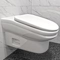 トイレでサボる時間25%減らす便器 角度を付け長時間座りが困難に