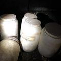 床下から見つかった人間の舌が入ったボトル(画像は『The Sun 2020年2月18日付「CREEPY FIND Jars of preserved HUMAN TONGUES dating back 50 years are found hidden in house」(Credit: Reddit)』のスクリーンショット)