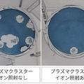 プラズマクラスターで空気中のコロナが減少 シャープが発表