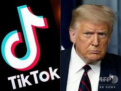 動画共有アプリ「ティックトック」のロゴ(左)と、米国のドナルド・トランプ大統領(2020年8月1日作成)。(c)Lionel BONAVENTURE and JIM WATSON / AFP