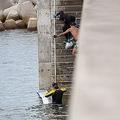 葉山の海でサザエなどを乱獲する悪質密漁団 中国人密漁者も多数