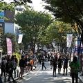 売り上げが90%減も…韓国人も頭を抱える「日本製品不買」の余波
