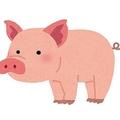 豚にバンジージャンプをさせるなんて…